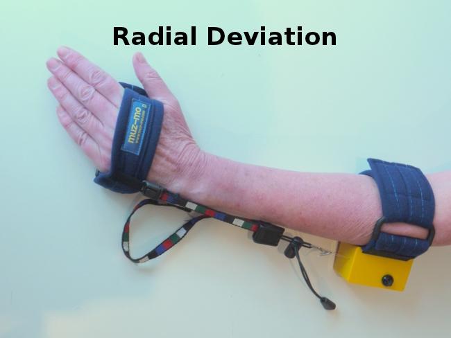 muz-mo-radial-deviation-exercise