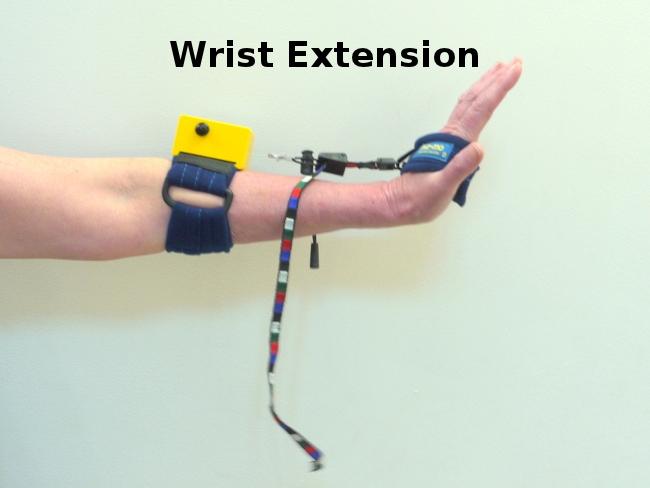 muz-mo-wrist-extension-exercise2